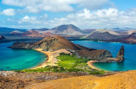 Visit Galapagos On A Budget