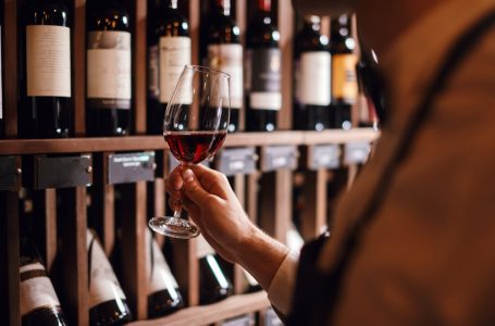 Qualities of the Wine Cellar you must know