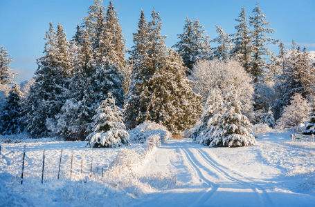 What to Know to Prepare for Northeast Winters