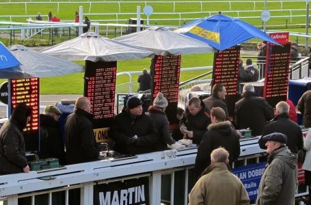 Things To Know About Bookies Before You Bet Through It