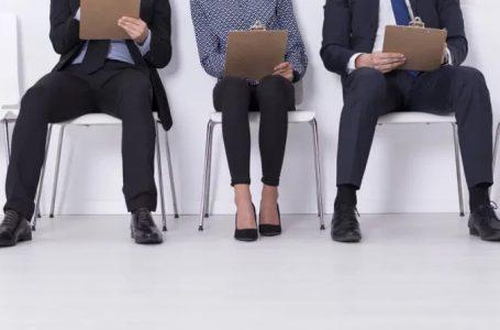 4 Types of Employment Screening