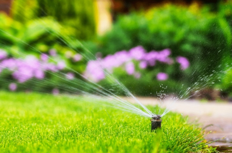 Signs That Your Sprinkler System Needs Attention