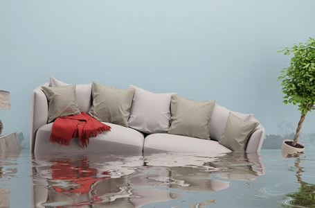 How to Proceed When Your Home Gets Flooded