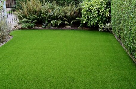 Artificial grass: A complete Guide