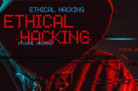 Ethical hackers can help your company: Learn more here!