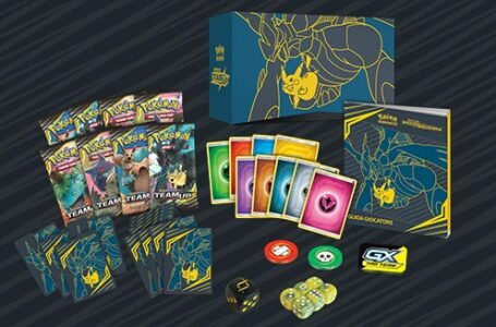 Are You a TCG Card Player? Here are the Accessories That You Should Have!