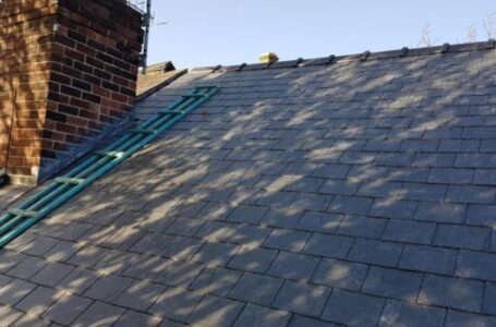 Why You Need Roof Specialists?