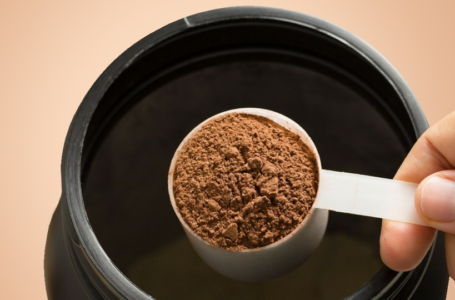 4 Essential Things to Consider When Picking out the Best Protein Powder