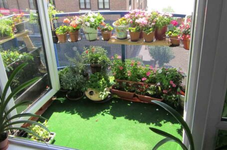 Accessorizing Home Lawns and Balconies
