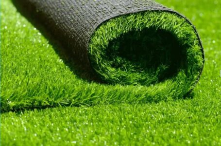 Natural Grass vs Artificial Grass- Which is best?