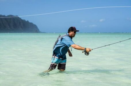 Marco Island fly fishing Shall Add Up To Your List of Pleasant Experiences!
