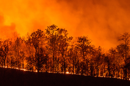 Ways To Protect Yourself From Wildfire Smoke
