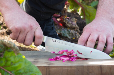 Why Gyuto Knife is the Ultimate Kitchen Accessory