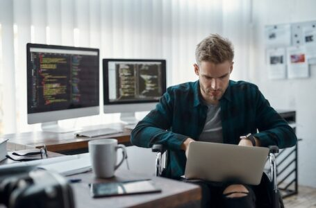 Importance of freelance WordPress developers: