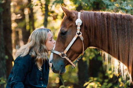 Tips for Getting Yourself and Your Horse in Peak Condition for Competition